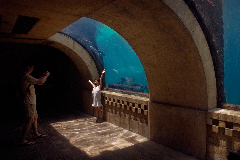 09_Aquarium-Girl